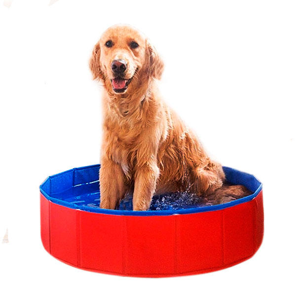 piscine pour chien pliant antid rapant plastique pvc jardin. Black Bedroom Furniture Sets. Home Design Ideas