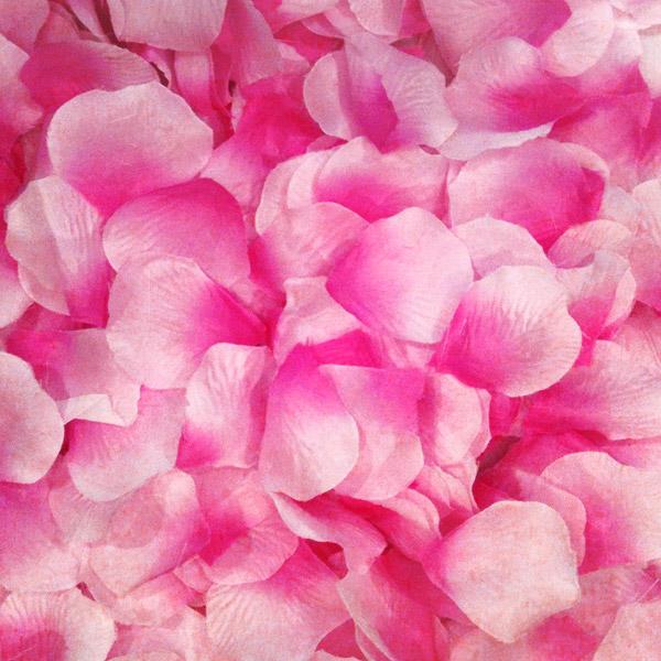 1000 Petales de Roses en Faux Soie Rose Fanée pour Mariage Fete Decor